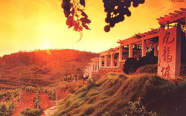 Huadong Winery Qingdao Laoshan